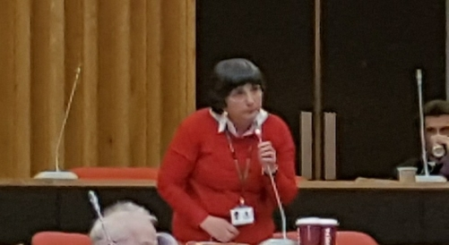 Cllr Sue James arguing for fairer funding for health and Social Care